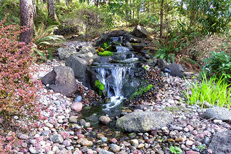 Landscaping Services Tacoma